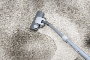 Cleaning Carpet - Cropped